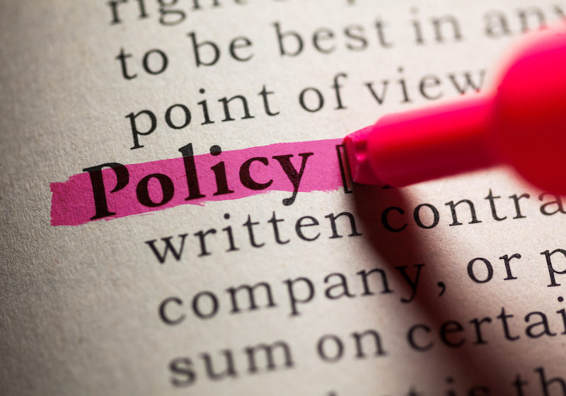 Fake Dictionary, definition of the word policy.